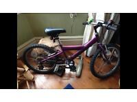 Kids purple bike