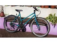 Small ladies / teenagers mountain bike in need of maintenance