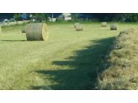 Hay Haylage & straw