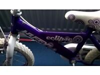Matching child bikes as photo