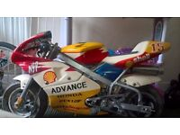 50cc Honda Advance