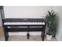 Havian 30 KORG Digital Piano 88 Keys Arranger Stage Piano, No Marks at all