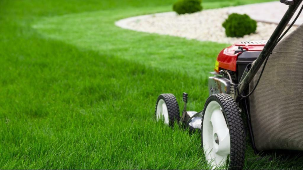 PM Garden Maintenance - Mowing and Gardening in Portadown, Craigavon, Lurgan, Armagh, Moy, Dungannon