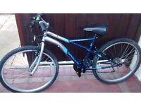Unisex bike 8 - 12 bike.