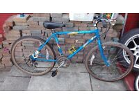 Barn find! Raleigh 1st ever mountain bike totally original