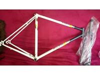 Raleigh frame, race, road, fixie, single speed, project bike.