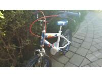 GB bike for 4 yr old
