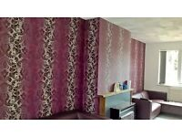 BKL HOME Ltd: Provide Painting & Decorating,Wallpapering,Fencing ,vinyl flooring,ceiling rose!!