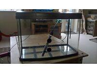 65 Aquarium///Fish tank plus extras