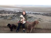 Fairy Dog Mother, Registered Dog Walker, Cramond area EH4