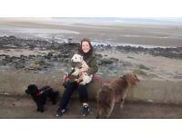 Registered Dog Walker, Cramond area EH4