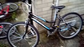 mountain bike ladies. 26 inch wheels 12 months old , hardly used.
