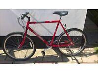 Mountain bike Raleigh