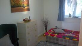 single room in nice quiet place