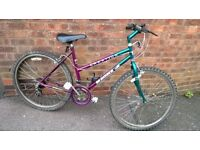 "ladies magna creation bike 26"" wheels"