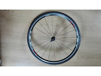 Shimano R500 Front Wheel with Continental GrandPrix GT Tyre