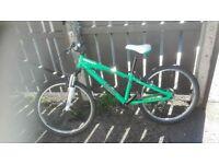 24in Gaint Brass Mountain bike £45