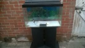 Fish Tank 30x 18x12 complete with stand filter heater gravel.light not woking