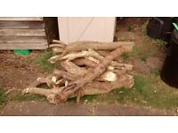 Assorted logs for chiminea, wood stove etc. - approx 80 kg