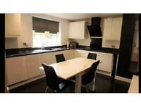 2 Bedroom ground floor flat, South Shields