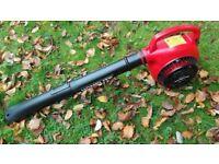 Homelite Petrol Leaf Blower