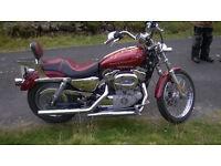 Harley Davidson Sportster 1200 2006/7