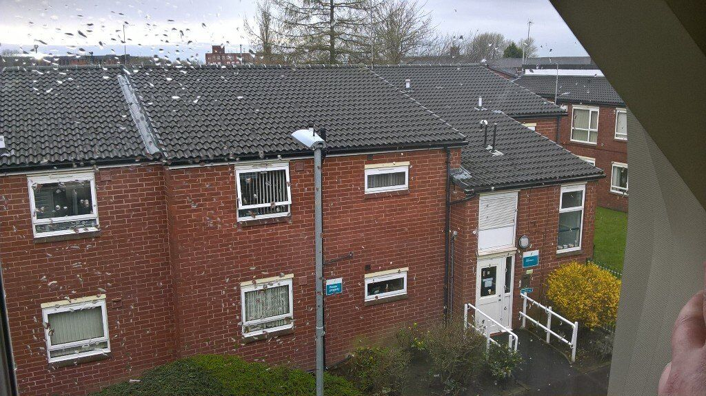 1 BEDROOM FLAT WANTED IN THE BOLTON AREA