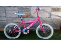 Raleigh Roxy Girl's Bicycle