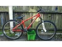 DMR Dirt jump DJ park bike