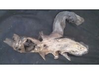 Piece of heavy driftwood (38cm tip to tip)