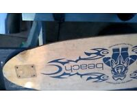 Urban Beach Long Board board