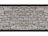 Stonework restoration / repointing
