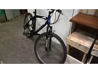 "Giant Rock 21 Speed Mountain Bike Mens - Black & Blue 19"" Frame"