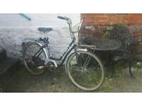 Authentic Vintage French bicycle