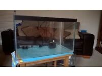 Glass Fish tank with heater and pump