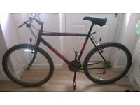men's limited edition mountain bike