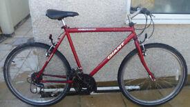 20 inch male Giant GSR200 bike