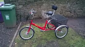 """Pashley Tri 1 Trike 7 speed 20"""" wheels Excellent condition great Christmas gift"""
