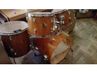 Stagg Tim Custom finsh drum kit - £60