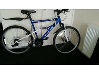 Blue apollo radar mountain bike
