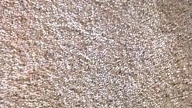 Brand new mid brown mottled carpet good quality left from our new lounge completely unused off cut.