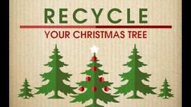 Recycle your real xmas trees.. Collection from now until 8th Jan