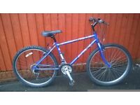 Raleigh IMIA Youth or Mans Mountain Bike .... Super Value ... £45.00..Rides Well.. Great Choice