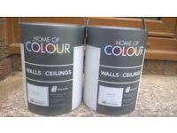 Paint -silk emulsion