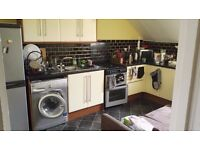 room in a two bed flat in central Brighton