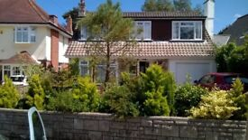 A large single/double room in a well located independent Bournemouth house