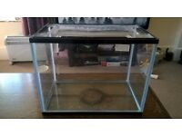Small Fish/Reptile Tank Unused