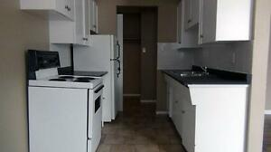 Nice 1 bedroom apartment avaliable at 10645-116 street , NW, Edm