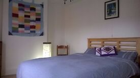 Large double room a walkable distance into the city of Exeter. Buses also nearby.
