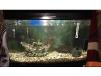 Three ft fish tank with all accessories